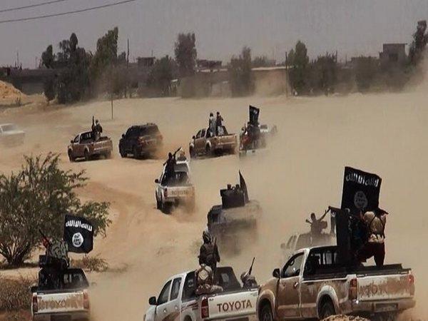 دام برس : دام برس | الاحتلال الأمريكي ينقل 60 إرهابياً تابعاً لـ داعش من سجون الحسكة إلى التنف
