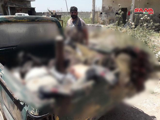 دام برس : دام برس | عشرات القتلى من جنسيات أجنبية في صفوف الإرهابيين بريف حماة