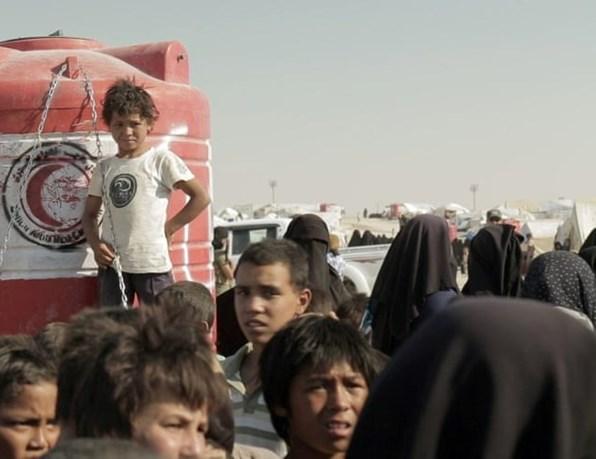 دام برس : دام برس   مخيم الهول .. حاضنة لعودة